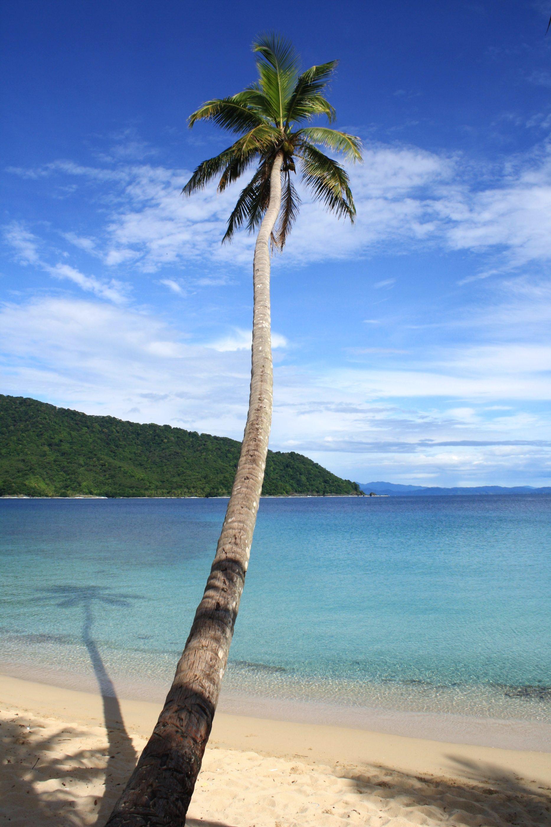 Ein kurzer Spaziergang führt von Sapzurro über die Grenze nach Panama zum wunderbaren Strand La Miel