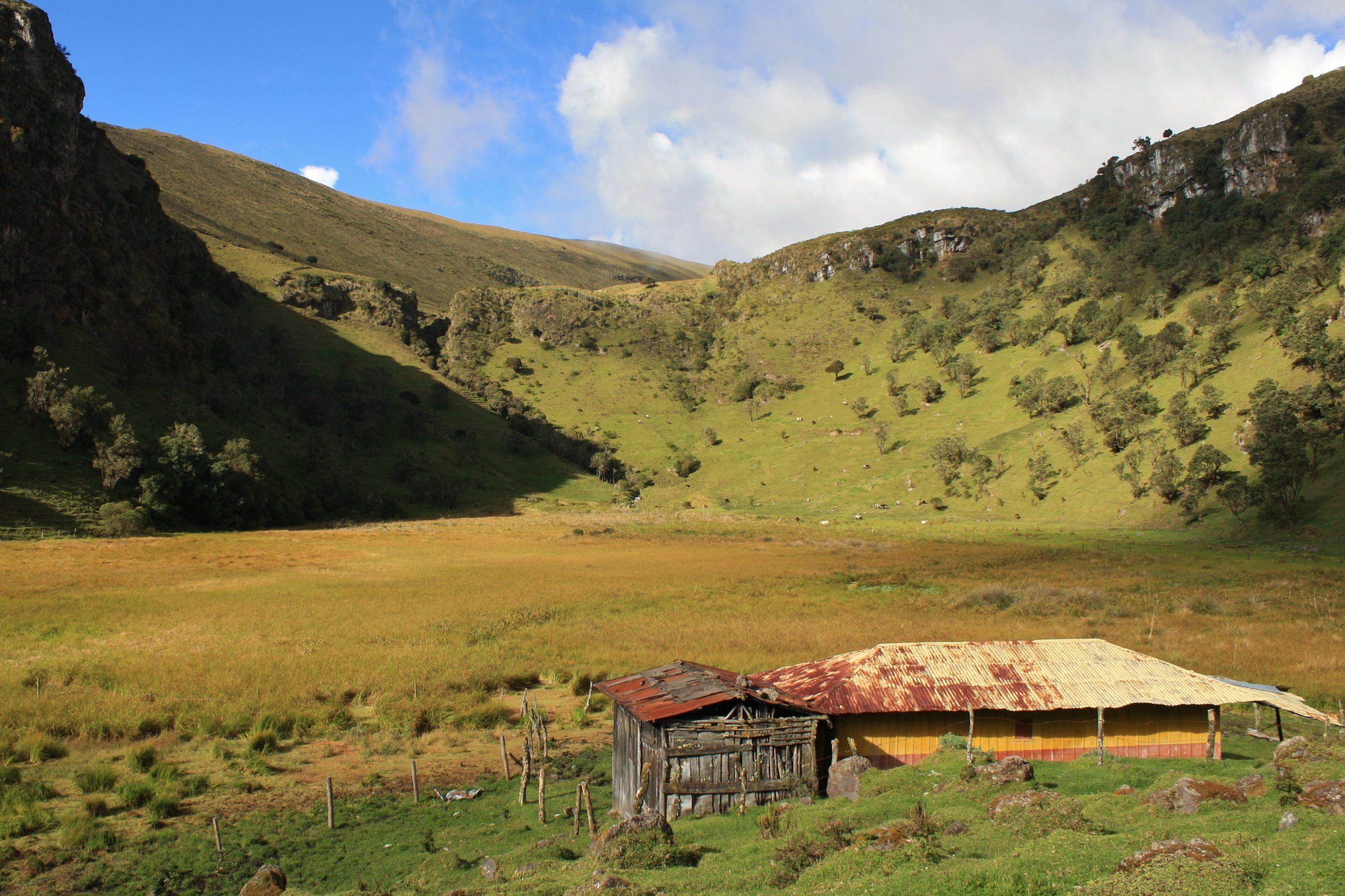 Der Páramo ist meistens in Wolken gehüllt, doch manchmal gibt er die wunderbare Landschaft preis...