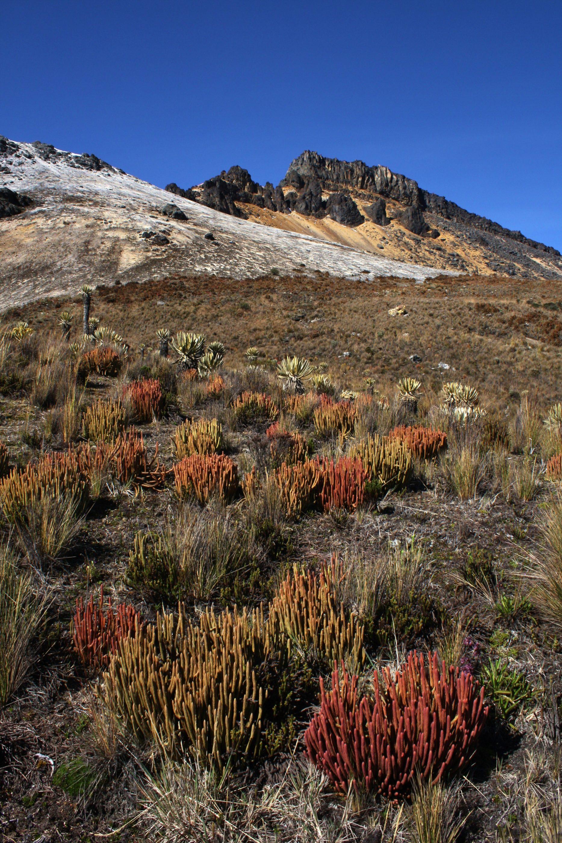 Aufstieg zum Gipfel des Paramillo del Qunidío